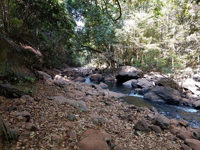 On our way to Dudhsagar falls দুধসাগর ফলস এর পথে